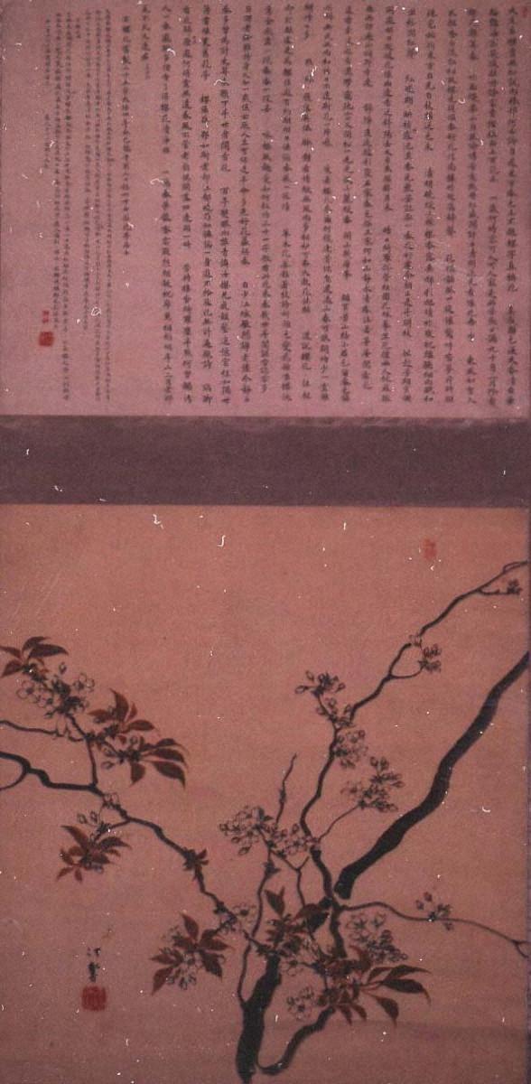 桜花図(岡本花亭詩書)
