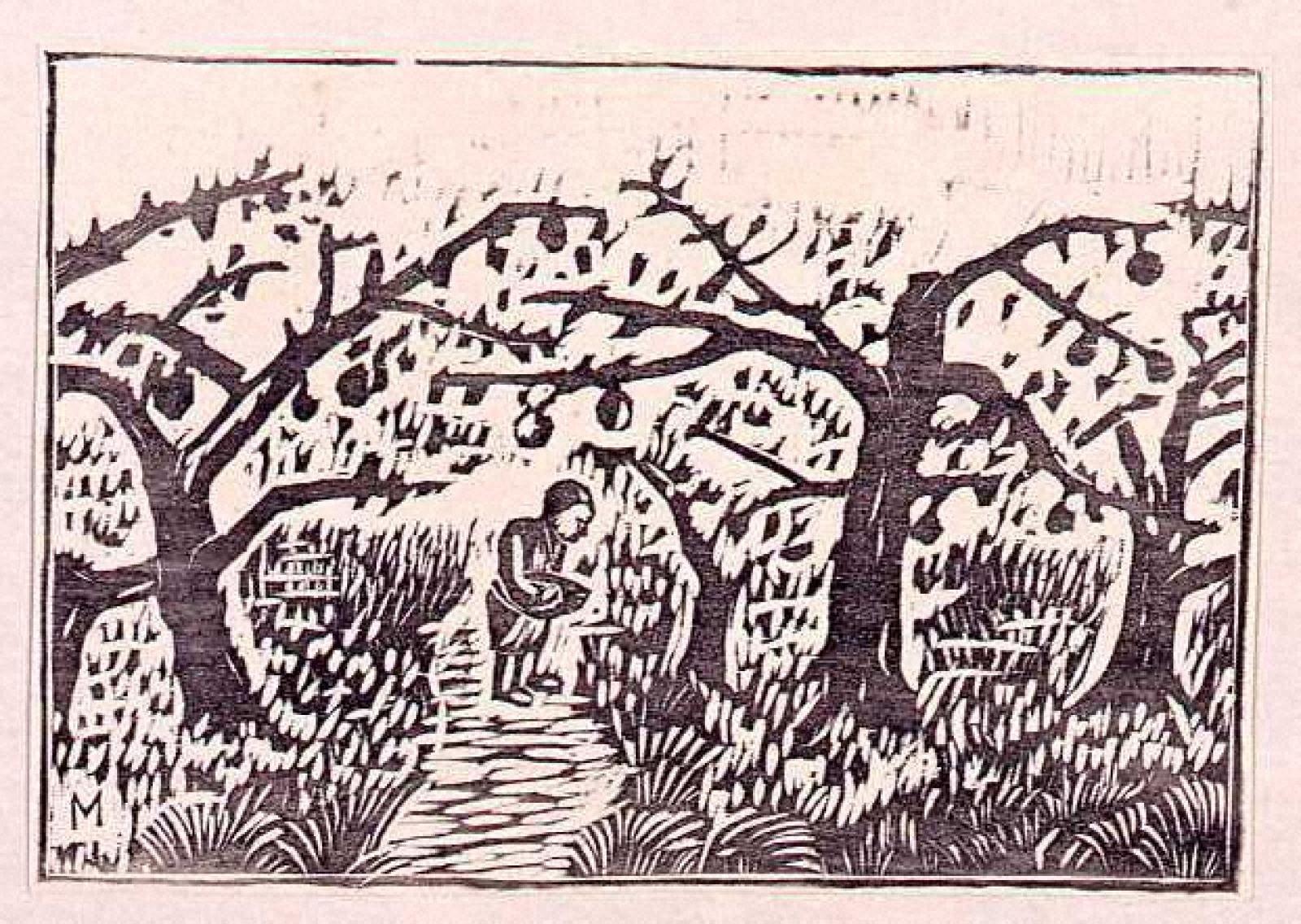 朝景林檎樹