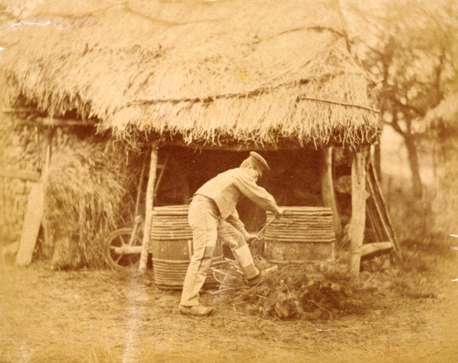 自然の習作 農夫