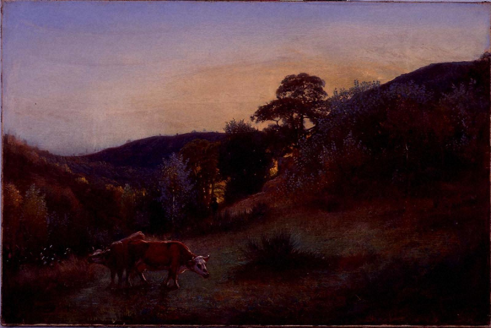 風景-丘陵の牛