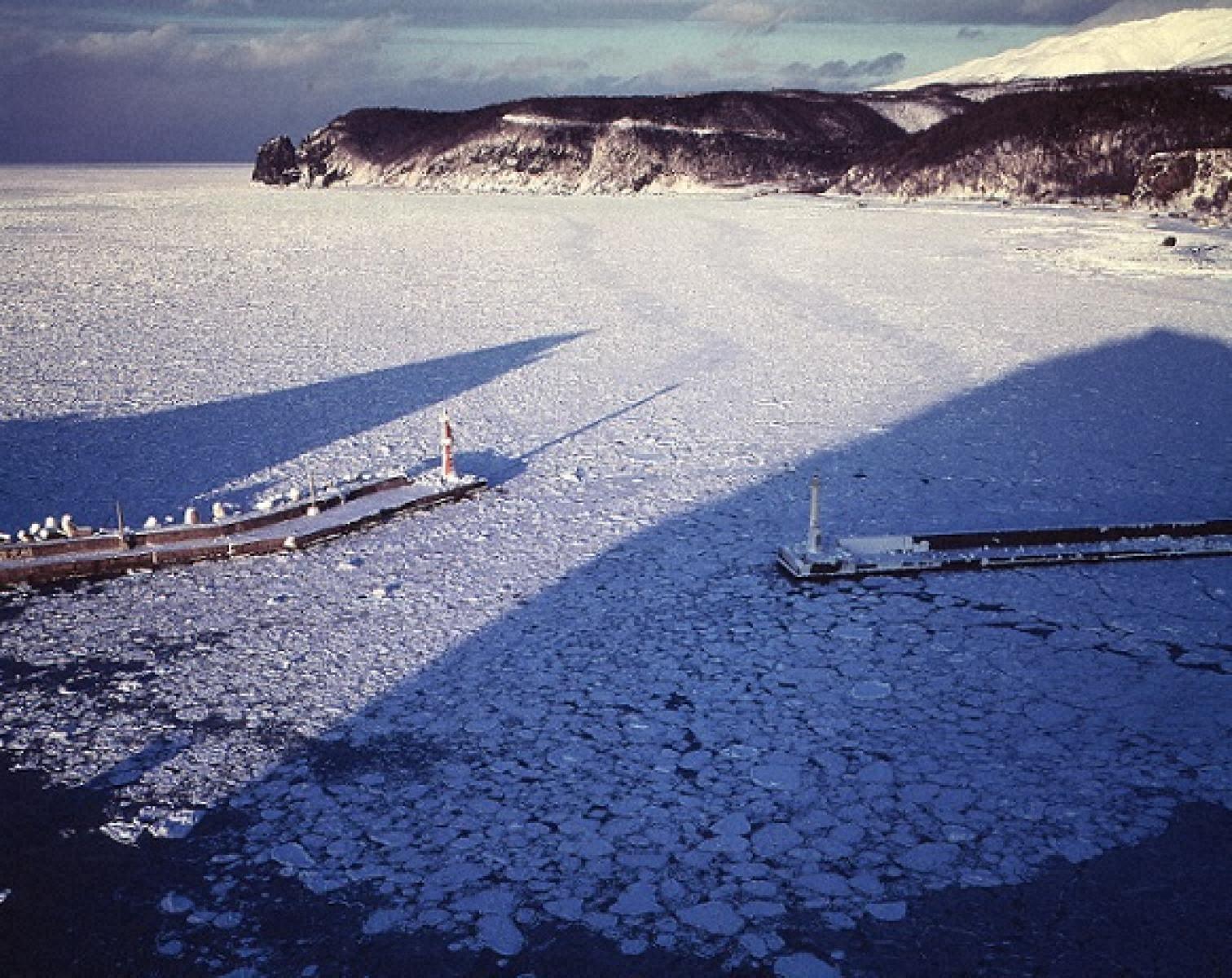 湾内に押し寄せた流氷原