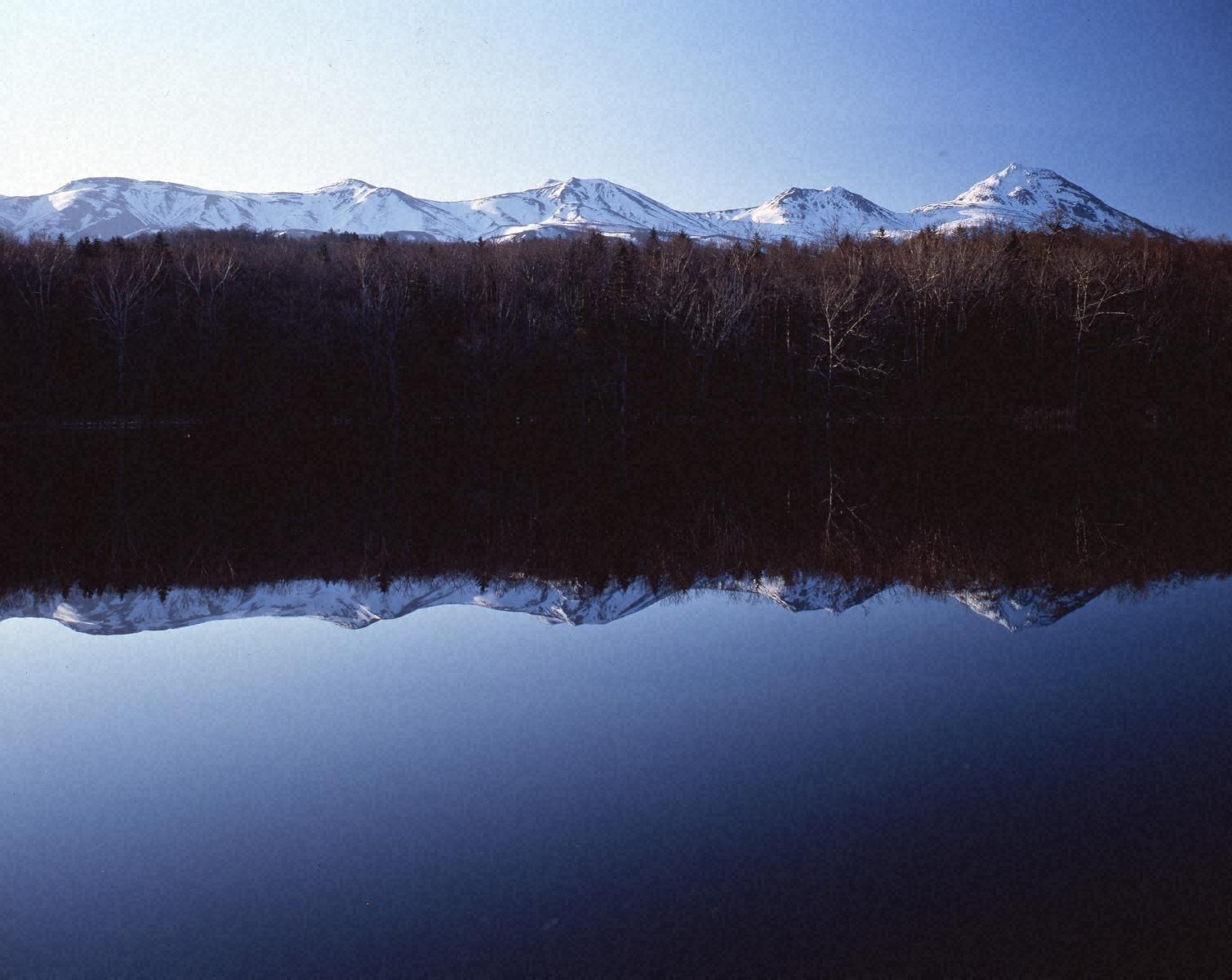 早春の知床五湖