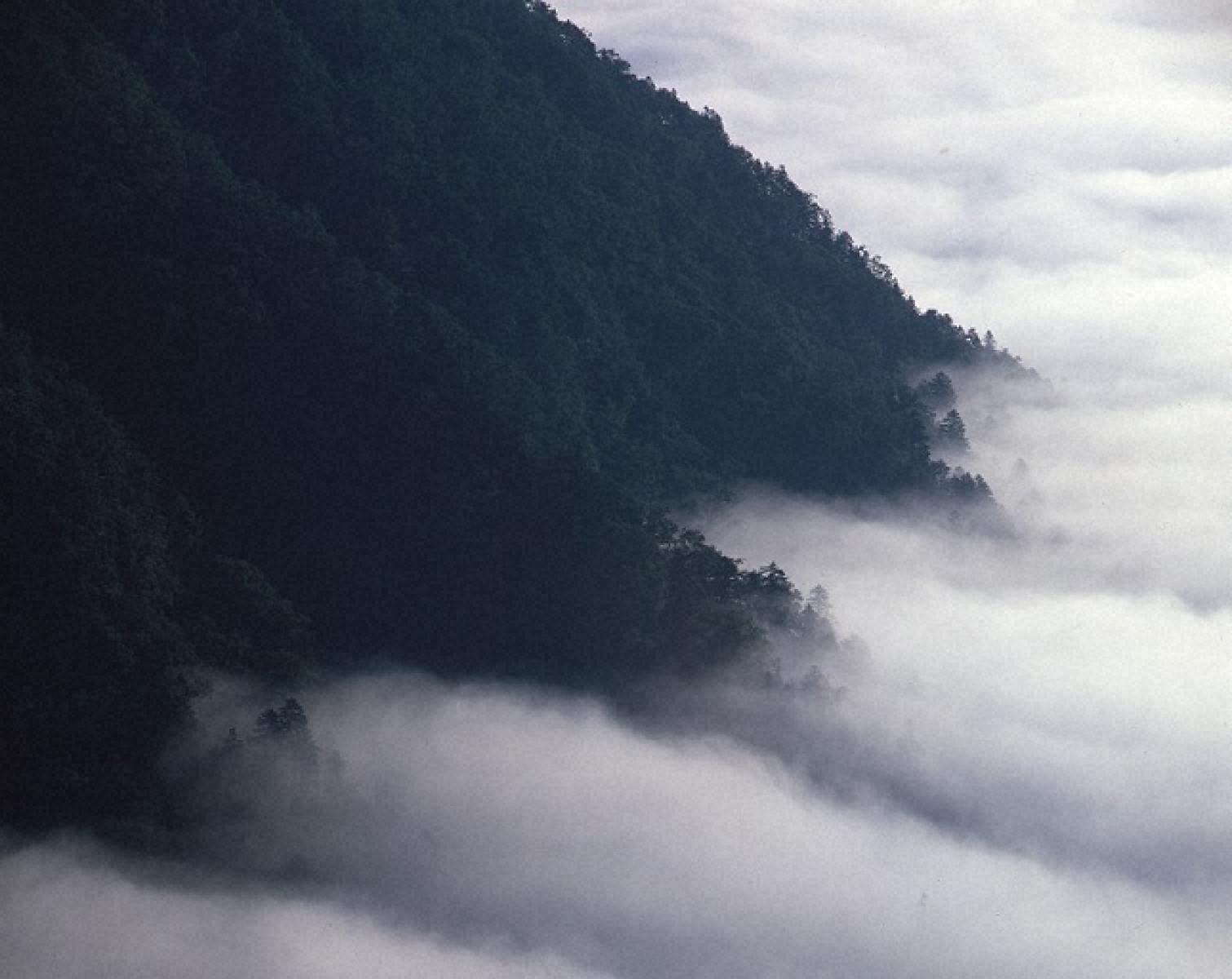 湖岸に漂う雲海