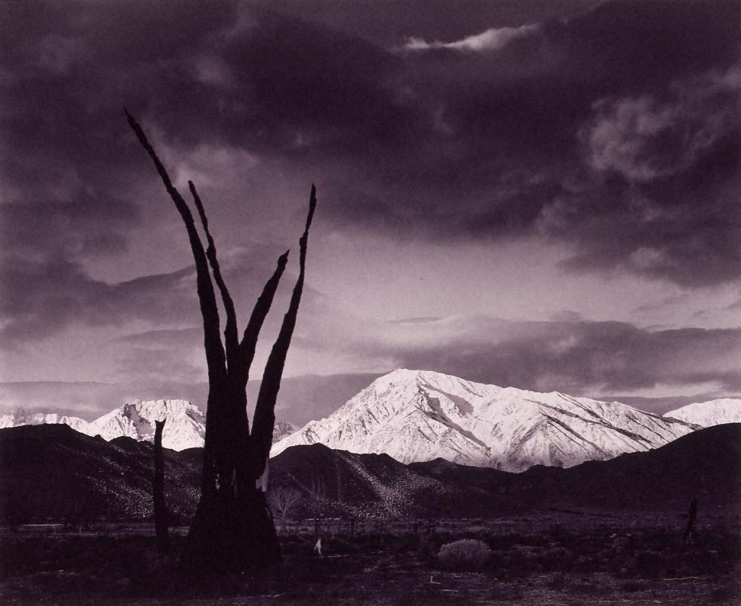 ポートフォリオⅦ: トム山の日の出