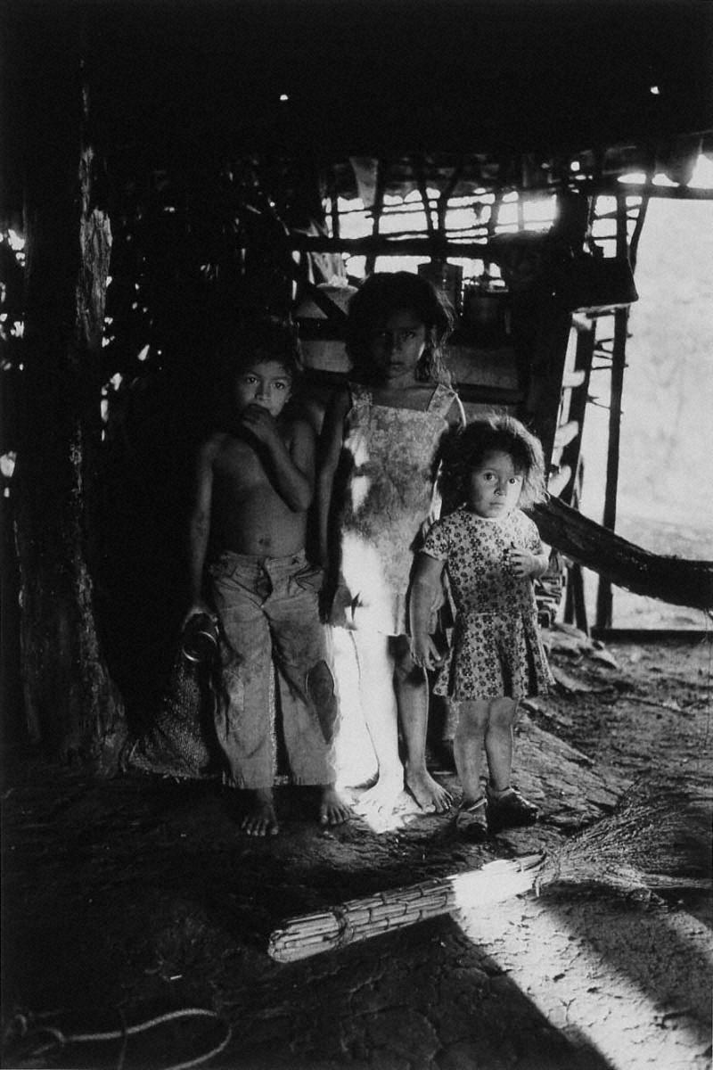 戦場から人間へ―長倉洋海18年の軌跡 農村で出会った姉妹