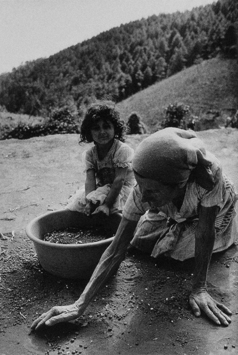 戦場から人間へ―長倉洋海18年の軌跡 脱穀した豆を拾う老女と孫娘