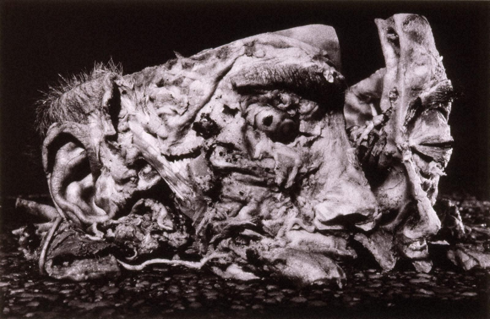 INOSE Kou 1982-2000