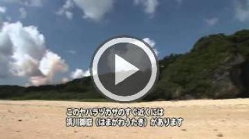 ヤハラヅカサと浜川御嶽(1460.jpg)