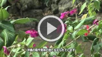 受水・走水(1469.jpg)
