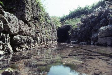 カンチャ大川(45070.jpg)