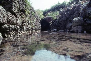 カンチャ大川(45113.jpg)