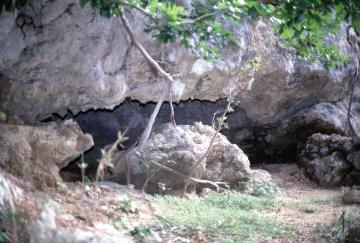 具志堅ウージ洞穴遺跡(45123.jpg)