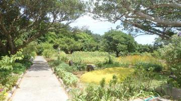 花公園(47752.jpg)