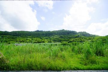 新里の風景(48055.jpg)