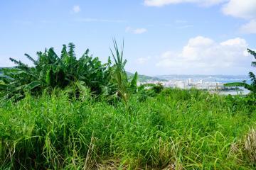 新里の風景(48056.jpg)
