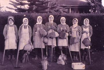 ハワイで働く沖縄の女性労働者たち(5966.jpg)