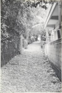 石畳道(636.jpg)