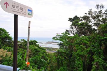 垣花樋川からの風景(732.jpg)