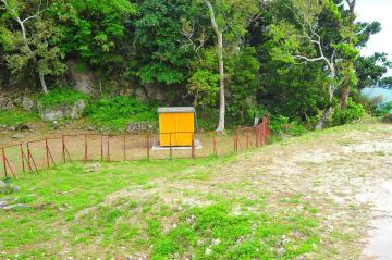 知念城の拝所(765.jpg)