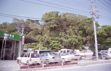 玉城村の風景(9468.jpg)
