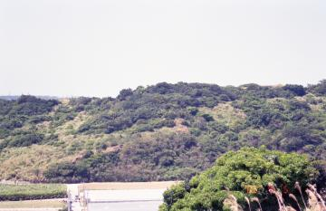 當山からの風景(9475.jpg)
